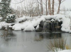 20141125_pondpic-winter
