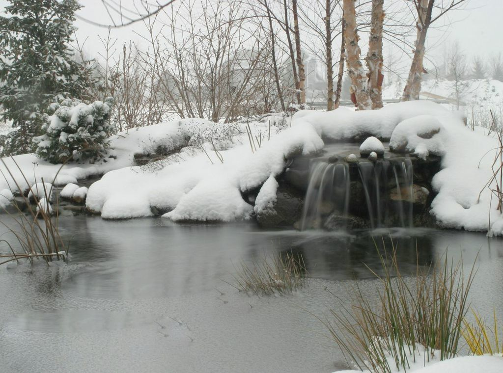 Keeping a pond healthy during winter.
