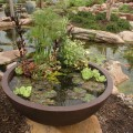 patio-pond-5
