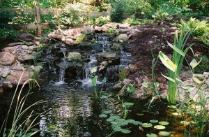 Pond Builders Raleigh NC