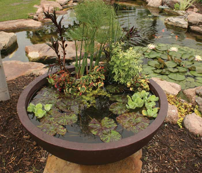 Pro Tips You Want To Install A Pond Or Water Feature