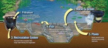 ecosystem-header-image-sm